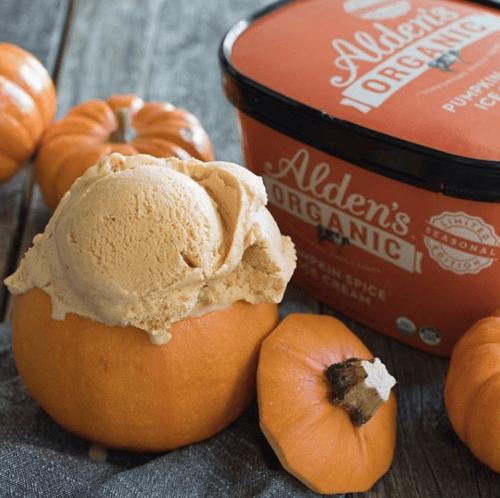 Alden's Organic Pumpkin Spice Ice Cream