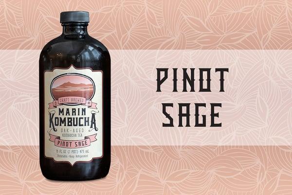 kombucha-pinot